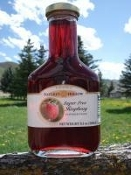 Nature's Hollow Sugar Free Raspberry Syrup with Xylitol